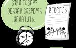 Учет векселей в бухгалтерском учете: пошаговая инструкция