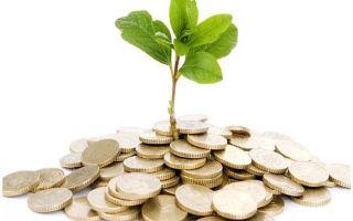 Рентабельность инвестиций — что это, формула расчета