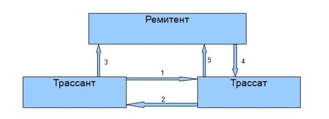 Переводной вексель (тратта): как выглядит, чем отличается от обычного