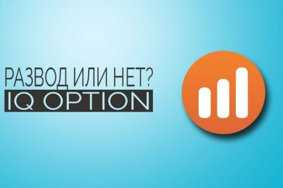 iq option - брокер бинарных опционов или лохотрон?