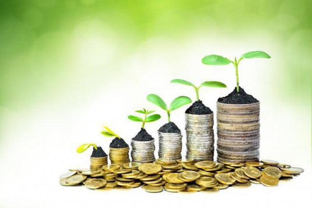 Инвестиционный актив - что это?