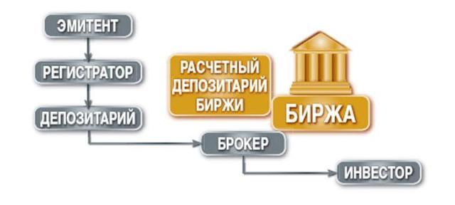 Биржевой рынок - что это, функции, виды и участники