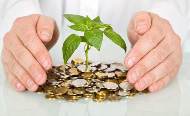 Чистые инвестиции - что это, для чего нужны, виды