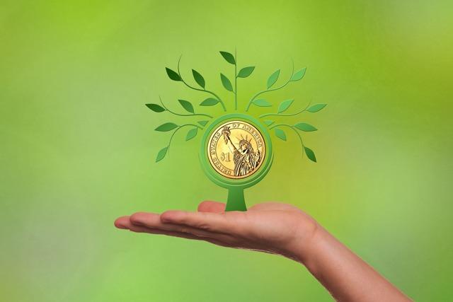 Субъекты рынка ценных бумаг - кто это, характеристика и виды