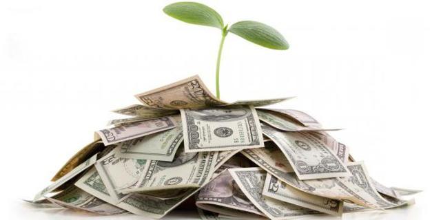 Социальные инвестиции - что это, зачем нужны, примеры